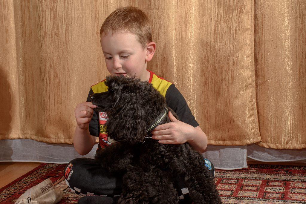 Terápiás kutya a gyerek előtt ül.