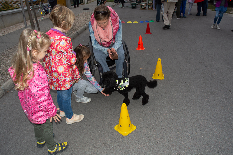 terápiás kutya gyerekekkel